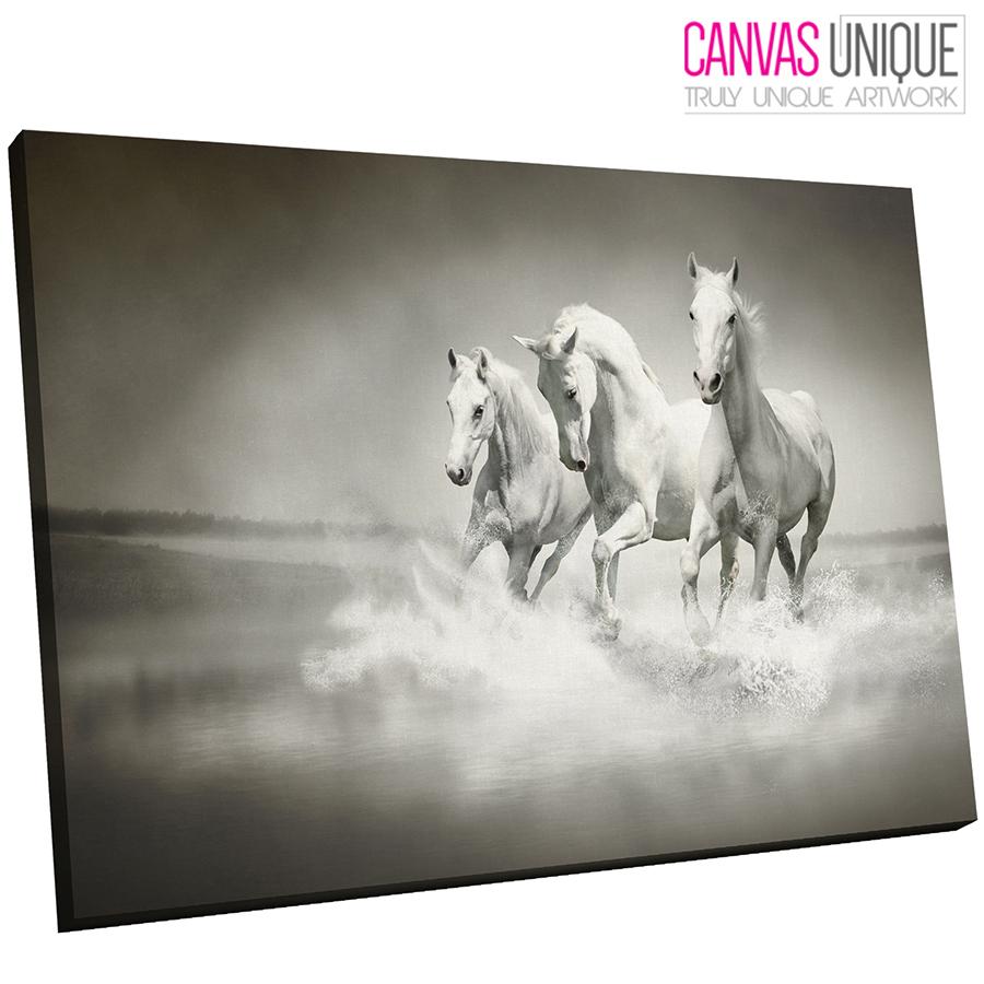 A356 Three Weiß Stallions Ocean Run Animal Canvas Wall Art Framed Picture Print