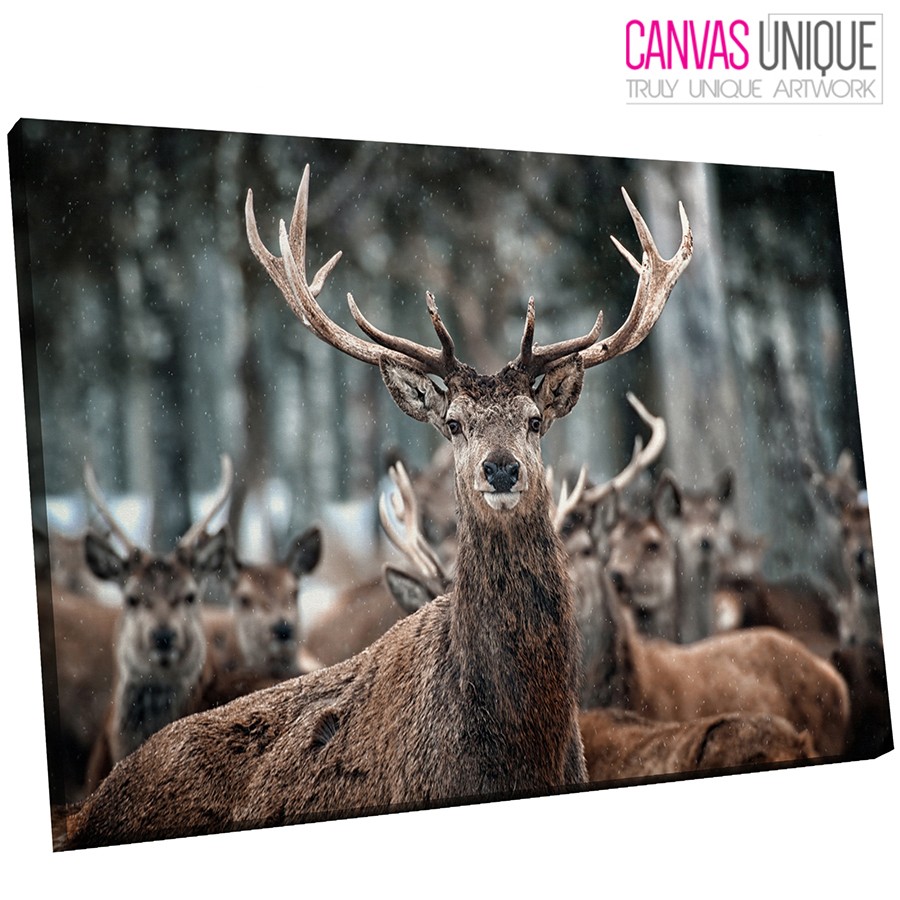A375 Winter Snow Forest Stag Herd  Animal Canvas Wall Art Framed Picture Print