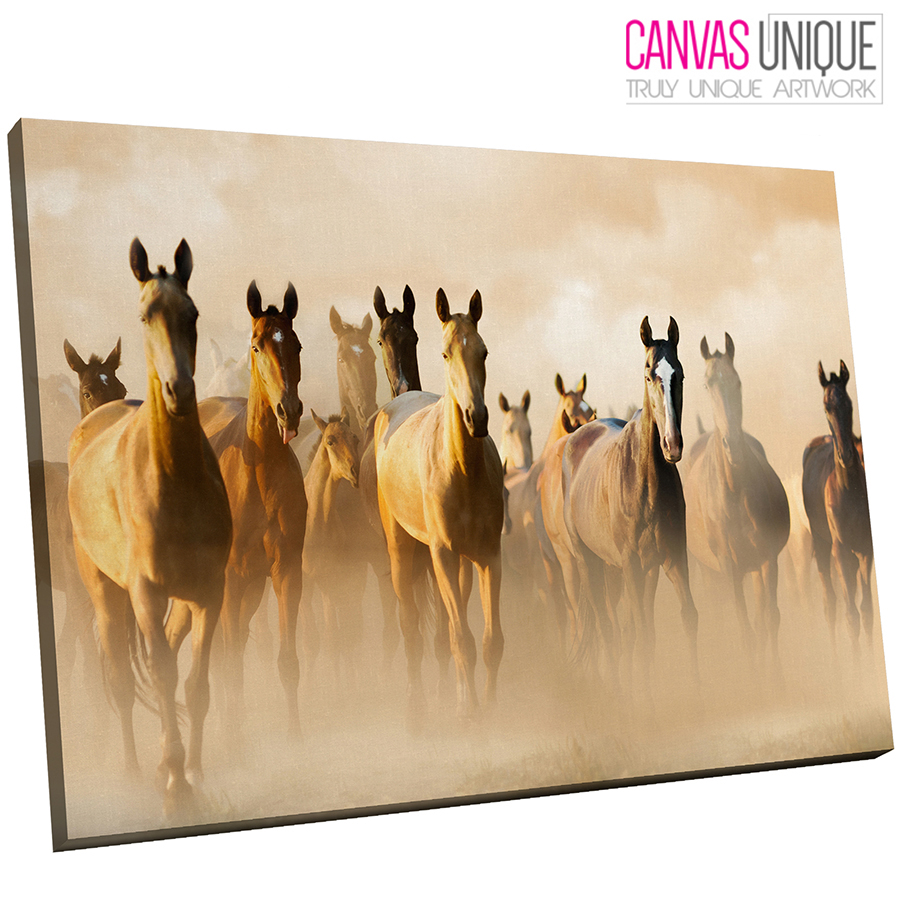 A670 braun Horse Stampede Herd Animal Canvas Wall Art Framed Picture Print