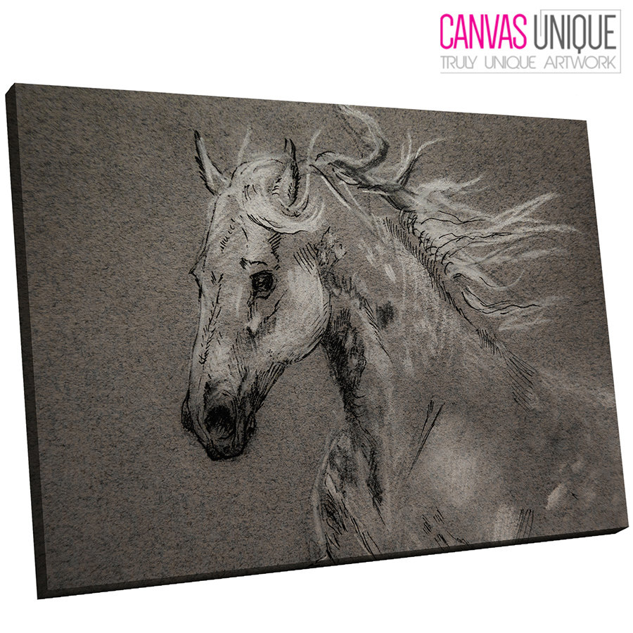 A800 Grey Sketch Horse Art Animal Canvas Wall Art Framed Picture ...