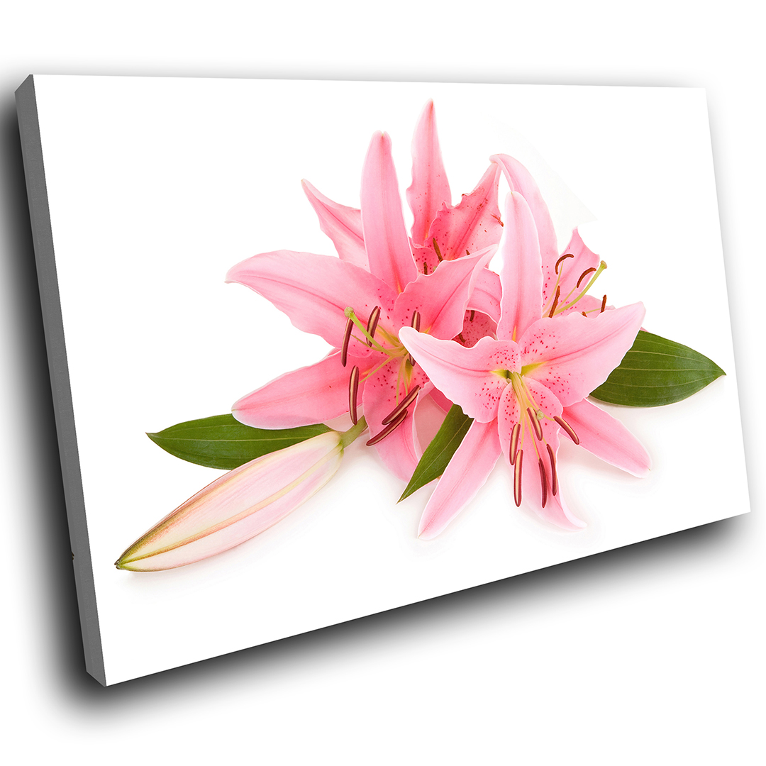 Zab111 pink white lily flower modern canvas abstract wall art image is loading zab111 pink white lily flower modern canvas abstract izmirmasajfo