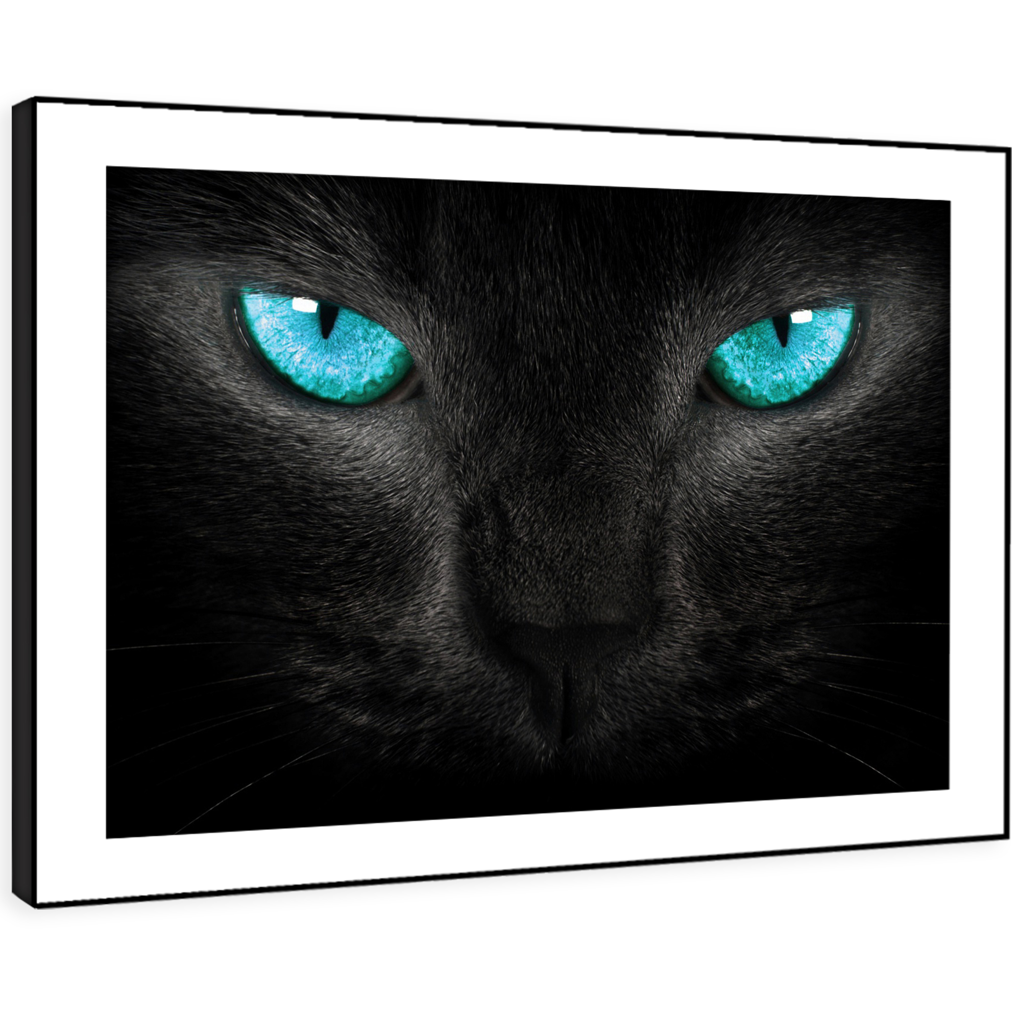 Details about a159 black panther blue eyes funky animal framed wall art large picture prints