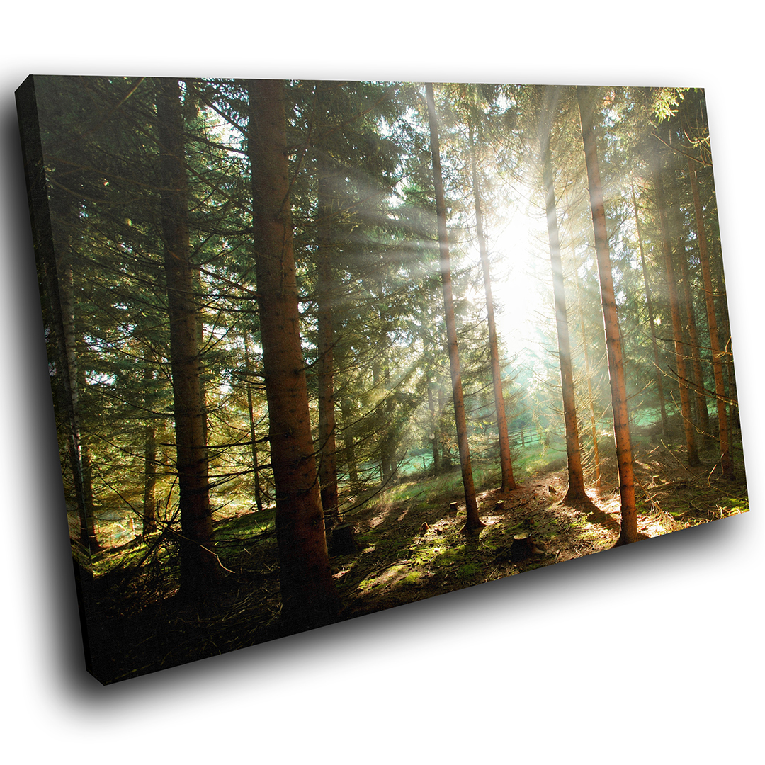 Grün Forest Sunrise Nature Scenic Canvas Wall Art Large Picture Prints